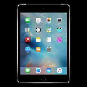 Need an Ipad for Business or pleasure ?