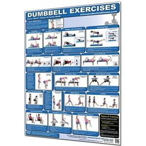 Laminated Chart-Dumbbell Core/Back/Chest&Lower Body CHDCB