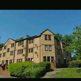 1 bedroom flat in Giffnock for rent