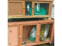 2 rabbit hutches ,