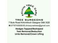 Kelvin Tree Care