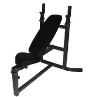 Northern Lights Olympic Workout Bench