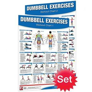 Laminated Chart - 2 Pack Dumbbell Training SALE!!! CHDUMBB2PACK
