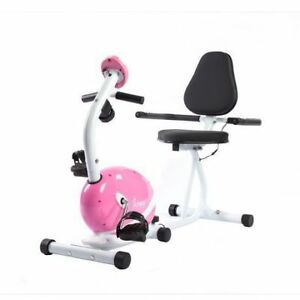 Like- New Stylish & Cute Fitness Exercise Bike - BARELY USED!