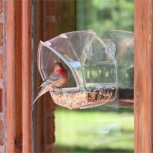 WINDOW WILD BIRD FEEDER