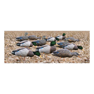 NEW - Duck Decoys w/ Decoy Bag ($399 retail)