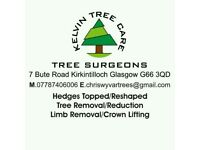 Kelvin Tree Care - tree surgeons