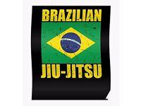HOME STUDY BJJ BRAZILIAN JIU JITSU DVDS gracie barra gi kimono tatami ufc boxing - POSTAGE AVAILABLE