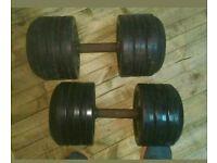 Ivanko 32kg and 42kg dumbbells singles