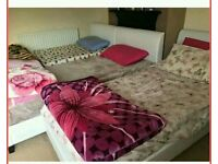 Free only tonight Comfortable single beds with mattresses