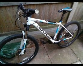 Cannondale trial 6
