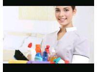 Room attendant/cleaner/housekeeping/housekeeper/hotel/job/vacancy
