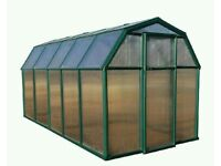 Rion Greenhouse 6x10 new !!! RRP £1100