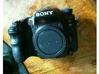 Sony slt a77v body only