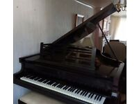 Immaculate 'Neindorf' Baby Grand Black Piano & Stool - CAN DELIVER