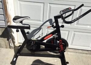 Personal trainer spinner exercise bike including LCD $250