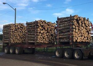 Log truck ,trailer for sale