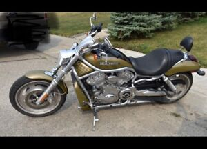 VROD spring is not to far away!!!!!!