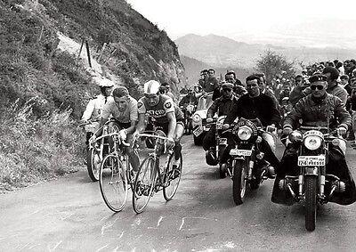 Jacque Anquetil and Raymond Poulidor 1964 Tour de France Poster