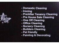 Spotless Cleaner