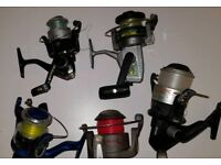 5×fishing reels £20 for all