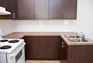 RENOVATED! 4 BEDROOM - STEPS FROM CONCORDIA/MCGILL