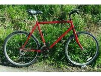 Man's Raleigh bike