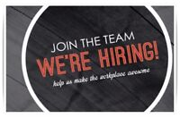 Salon Receptionist / Assistant Needed