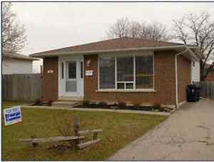 near humber college find local room rental roommates