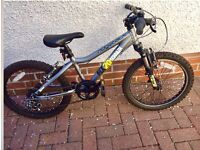 "Ridgeback MX20 Bike 20"" wheels"