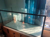 *** WANTED 3FT FISH TANK *** AQUARIUM ***