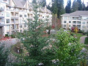 Avail  May 1, 1 Bedroom & Den,  (North Shore, Raven Woods