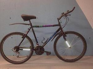 Fully tuned! 21 speed bike with fenders
