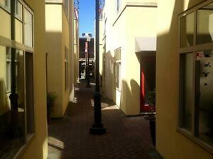 Downtown Ground Floor retail/office 270 sq.ft.