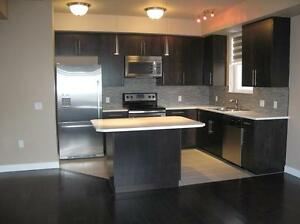 Luxury Two Bedroom/two Bathroom Condo close to Downtown