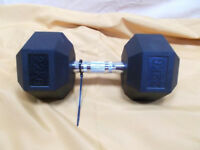 22kg Dumbell Weight