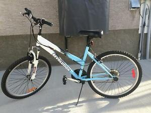 mountain bike for sale