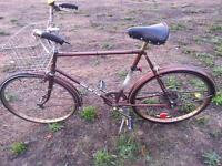 Velo Volé: CCM Elite / Stolen Bike: CCM Elite
