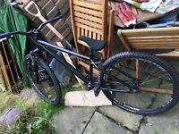 Down hill dirt jump bike for sale