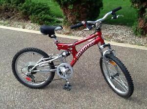 "Kids Infinity Mountain Bike 20"""