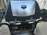 Natural Gas BBQ with side burner