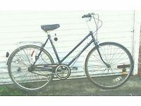 Ladies Saxon classic townbike