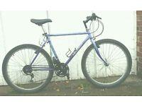 Peugeot Blue Lagoon bike