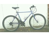 Peugeot Blue Lagoon bike