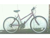 Ladies Raleigh Max lightweight bike