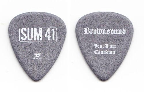 "Sum 41 Dave ""Brownsound"" Baksh Gray Guitar Pick - 2005 Tour"