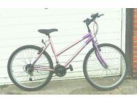 Ladies Fusion icecream bike