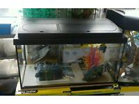 Fish tank (Excellent condition)