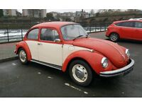1303 beetle for sale