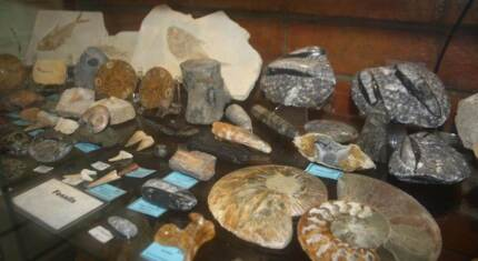 Crystals, Fossils and Minerals
